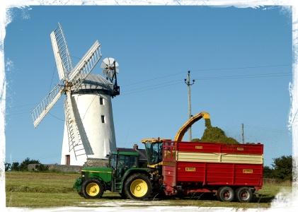 Ballycopeland Harvest