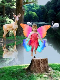 Be a Wood-Fairy!