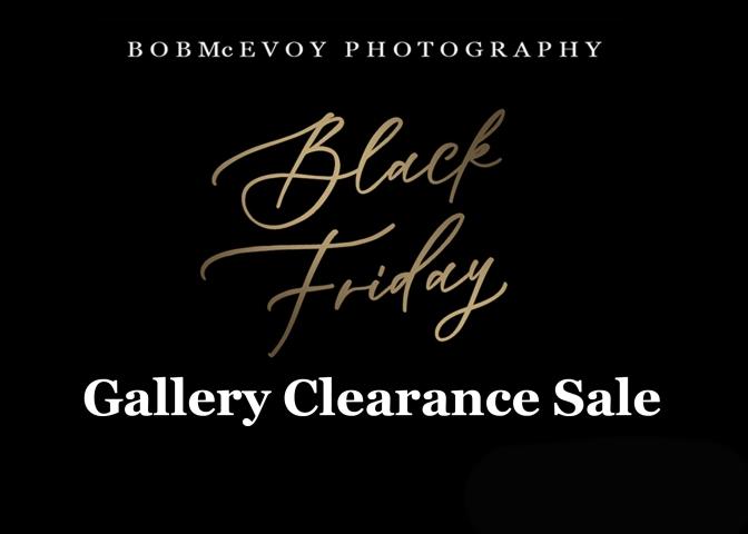 Black Friday Gallery Sale