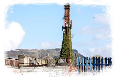 Belfast | Portraits2Go co uk