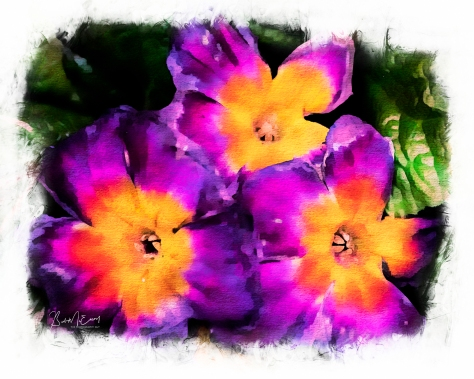 Flowers Watercolour CanvasUP