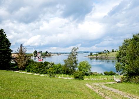 Strangford Lough from Sketrick